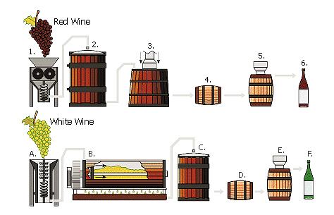 wijnproces